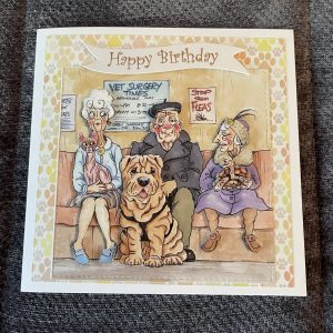 3D handmade birthday card   vets